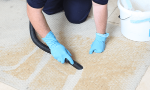 Professional Carpet Cleaning Near Me