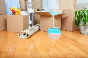 Cheap Carpet Cleaning Services Near Me